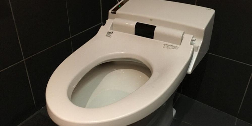 精神病院の保護室のトイレの便器