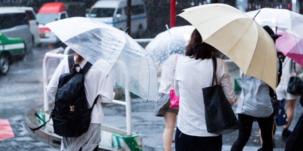 梅雨時期の雨